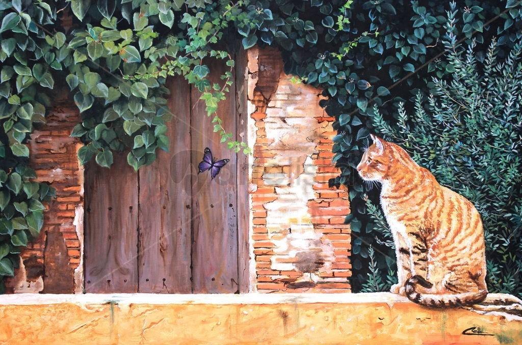 El gato y la mariposa, Daniel Martín Cea.