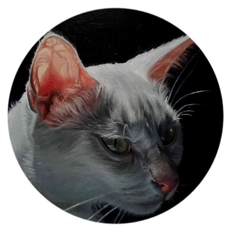 Gato II, Noelia Gomez